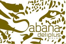 CABECERA-sabana