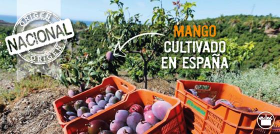 Mango de Mercadona Origen Nacional