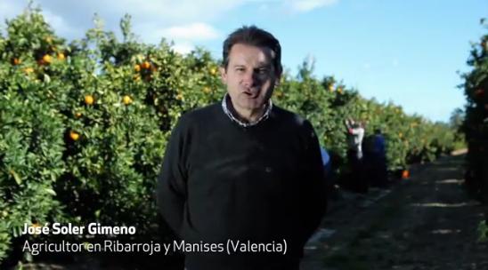 naranjas mercadona origen nacional